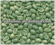 Best Green Coffee Bean Extract 50% Chlorogenic Acid from Coffea L.