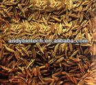 Celery Seed Extract (10% Apigenin)
