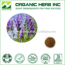 Natural Baicalin Radix Scutellariae Extract