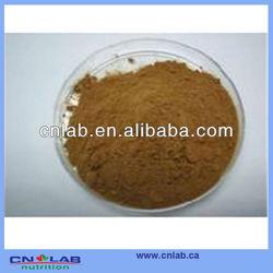 100% natural, medicine & food grade Yerba Mate Extract