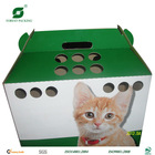 CORRUGATED PET CARRIER FP255033