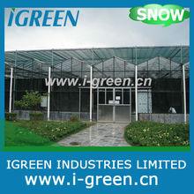venlo glass greenhouse for vegetable