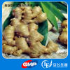 Factory supply high quality ginger extract powder (gingerol)
