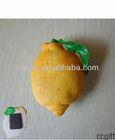 fruit resin 3d fridge magnets for christmas promotion