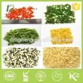 Shallot hortalizassecas, seco de alimentos, la base de la planta