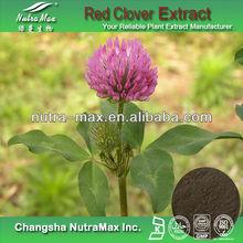 Red Clover Extract 20%Isoflavones