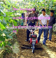 Mão cultivador / trator arar para hills pequena fazenda