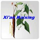 Chinese Herb---Shan yao