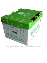 Wax Coated Corrugated Frozen Vegetable and Fruit Carton Box