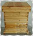 3 camada Langstroth tamanho colmeia / caixa de abelha