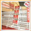 automatic poultry layer cages battery cages for birds
