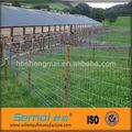 Alta qualidade metal deer/cavalo fazenda galvanizado fence( preço de fábrica)