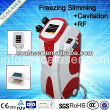 Newest Cryolipolysis / Cryo Slim/Wrinkle Removal And Fat Reducing Machine