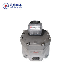 Digital Roots Gas Flow Meter