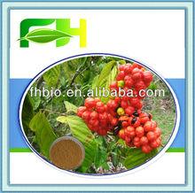 Spot Supply Natural Paullinia Cupana Extract/Guarana Seed P.E.