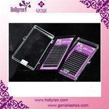 Hollyren Silk Extension Lashes