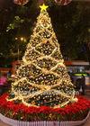 Drapery &ball giant decorated christmas tree