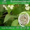 100% Natural Buckwheat Extract Rutin 60%, Grain buckwheat Extract