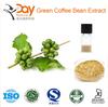 Green Coffee Bean Extract Pure Chlorogenic Acids 50%