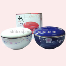 Stainless Steel Bowl Plastic Lid