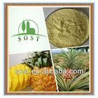 Extract Fruit Powder Sugar Free Pineapple Juice