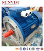 SAL Aluminum Series Three-Phase Electric Motor
