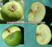Delicious Dired Fig Fruit Wholesale