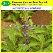 Natural 20% Forskohlin Coleus Forskohlii plant Extract