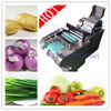 Hot Sale Vegetable Shredder/ Vegetable Chopper/ Cutter