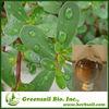 2014 GMO Free,100%Natural Purslane P.E
