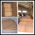 Multistrato di betulla/traviin legno lamellare/construction materiale