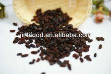 light brown seedlesss raisin xinjiang origin top quality