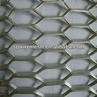 China Hexagonal Expande Metal Mesh