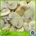 fábrica de processamento de cogumelos cozidos champignon cogumelo