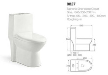 white differents types of water closet