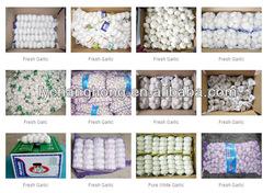 China cheap garlic/naturel ali/fresh garlic/natural garlic for wholesale