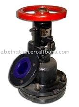 Glass lined flush valve 1