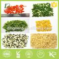 ทุกชนิดของผักแห้งผักแห้ง