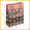 Colorful printed pe coated paper bags
