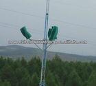 High Efficiency 3KW Wind turbine/electric vertical generator wind