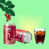 310ml Canned wild Chinese Date fruit juice