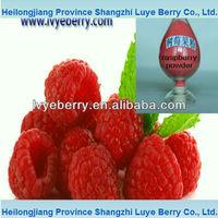 organic raspberry juice powder