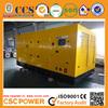 Diesel generator industrial power supply