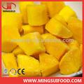 a granel de mango congelado trozo