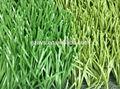كرة القدم العشب الاصطناعي / كرة القدم العشب الاصطناعي