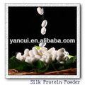 Poudre de protéine de soie( poudre de fibroïne)