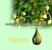 Pharmaceutical Graded 100% Pure Neem Oil