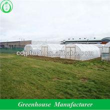 tomato plastic high tunnel greenhouse