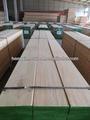 Pine lvl pranchas de andaimes usados para construção( países do oriente médio)