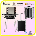 Professional cosmetic case,makeup case,trolley case with light